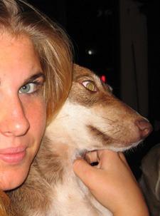 Curacao honden