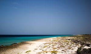 Top 12 Leukste Activiteiten op Curacao tijdens je Vakantie