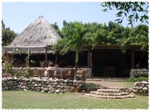 struisvogel-farm-curacao-2