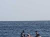 caracasbaai-strand-curacao-9