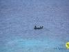 jan-thiel-beach-curacao-06